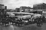 David Bruce Powers Train of Leavenworth at Denver, 1868 Photographic Print by William Gunnison Chamberlain