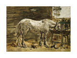 White Horse at the Drinking Trough, C.1885-90 Giclee Print by Eugène Boudin