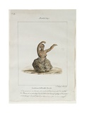 A Woman Dancer of the Island of Maui, 1819 Giclee Print by Jacques Etienne Victor Arago