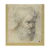 Study of a Bearded Head (Possibly for an Apostle) Gicleetryck av Parmigianino,