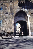 St. Stephen's Gate, Jerusalem, Israel Photographic Print