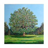 Bow Tree Summer Giclee Print by Noel Paine