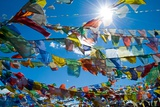 Forest' of Prayer Flags Backlit Against the Sun at the Top of Khardung La Pass (5,606M) North of… Photographic Print
