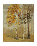 Autumn Birch Trees, 1950s Giclee Print by Svetlana Ryazanova