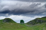 Sycamore Gap on Hadrian's Wall, Storm Sky, from A6318 Between Housesteads Fort and Greenhead,… Photographic Print
