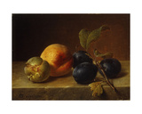 A Peach and Plums on a Marble Ledge, 1860 Giclee Print by Johann Wilhelm Preyer