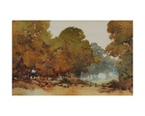 Gum Trees Giclee Print by Blamire Young