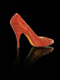 Stiletto by Salvatore Ferragamo, Owned by Marilyn Monroe Photographic Print
