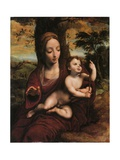 The Madonna and Child in a Landscape Giclee Print by Cornelis van Cleve