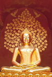 Golden Buddha Statue Inside the Chedi of Wat Phan On, Chiang Mai, Thailand Photographic Print