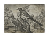 Old Master Engraving Giclee Print by Adriaen Collaert