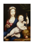The Madonna and Child Giclee Print by Cornelis van Cleve