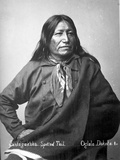 Sintegaleska, Spotted Tail, Oglala Dakota I, 1880s Photographic Print by David Frances Barry