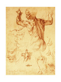 Anatomy Sketches, C.1508-12 Giclee Print by  Michelangelo Buonarroti