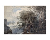Mountainous Landscape with Beech Trees, 1792 Giclee Print by John Robert Cozens