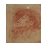 Study for the Head of the Prophet Haggai Giclee Print by  Guercino