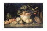 Still Life with Squirrel Giclee Print by Jan Pauwel the Elder Gillemans
