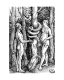 The Fall of Man, C.1514 Giclee Print by Hans Baldung Grien