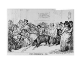 The Wonderful Pig, 1785 Giclee Print by Thomas Rowlandson