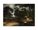Landscape with Forest Giclee Print by Lucas Achtschellinck