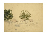 Gypsies - Huts of the Watul Tribe, Kashmir, C.1836 Giclee Print by Godfrey Thomas Vigne