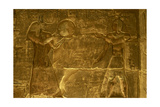 Ptolemaic Temple of Hathor and Maat. Anubis. Egypt Giclee Print