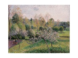 Apple Trees in Blossom, Eragny, 1895 Reproduction procédé giclée par Camille Pissarro
