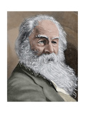 Walt Whitman (1819-1892). American Poet., Essayist and Journalist Giclee Print