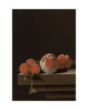Peaches and Apricots on a Stone Ledge Giclee Print by Adrian Coorte