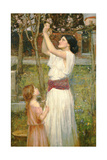 Almond Blossoms, C.1916 Giclee Print by John William Waterhouse