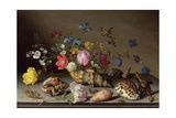 Flowers, Shells and Insects on a Stone Ledge Giclée-tryk af Balthasar van der Ast