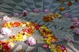 John Lennon Tribute in Strawberry Fields in Central Park, New York Fotografie-Druck