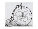Penny-Farthing Bicycle. Engraving. 19th Century Giclee Print