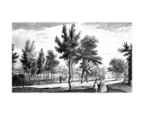 A View of the Elysian Fields from the Spring of Helicon, Stowe House Gardens, Engraved by George… Giclee Print by Jean Baptiste Claude Chatelain