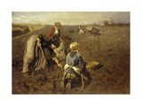 The Potato Harvest Giclee Print by Herman Hartwich