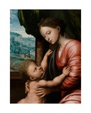 Detail of Virgin with Child Giclee Print by Jan van Hemessen