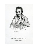 Niccolo Antonio Zingarelli, 1870 Giclee Print by Frederic Desire Hillemacher