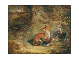 A Fox with a Pheasant Giclee Print by George Havell