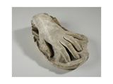 Cast of the Hand of Joan Thornycroft, 1899 Giclee Print by William Hamo Thornycroft