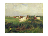 Cows in Field, 1895 Giclee Print by Walter Frederick Osborne