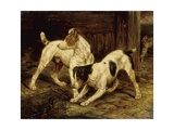 Terriers with a Caged Ferret, 1875 Giclee Print
