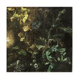 Thistles and Other Plants on a Forest Floor, a Landscape Beyond, Fragment Giclee Print by Matthias Withoos