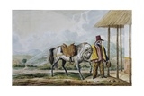 Country Riding Costume of the Plain of Bogota, 1834 Giclee Print by Joseph Brown