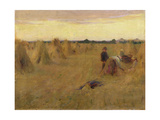 The Cornfield Giclee Print by Walter Frederick Osborne