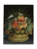 Reversible Anthropomorphic Portrait of a Man Composed of Fruit Lámina giclée por Giuseppe Arcimboldo