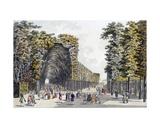 Limegrove Walk, Augarten, Vienna, 1790s Giclee Print by Johann Ziegler