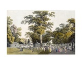 The Cafes in the Grand Avenue in Prater, Vienna, 1798 Giclee Print by Laurenz Janscha