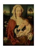 Holy Virgin with Sleeping Baby Jesus Giclee Print by Joos Van Cleve