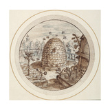 Beehive, Early 17th Century Giclee Print by Crispin I De Passe