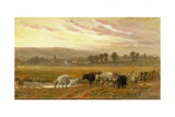 Sunset Near Amberley Giclee Print by Alfred Fitzwalter Grace